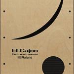Roland Hybrid Cajon ELCajon EC-10 Pic1