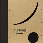 Roland Hybrid Cajon ELCajon EC-10 Pic2